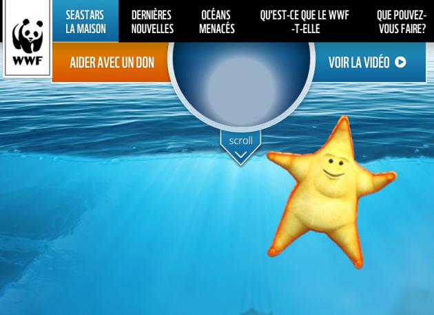 Seastars_WWF